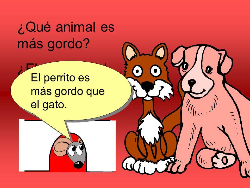 ¿Qué animal es más gordo ¿El perrito o el gato