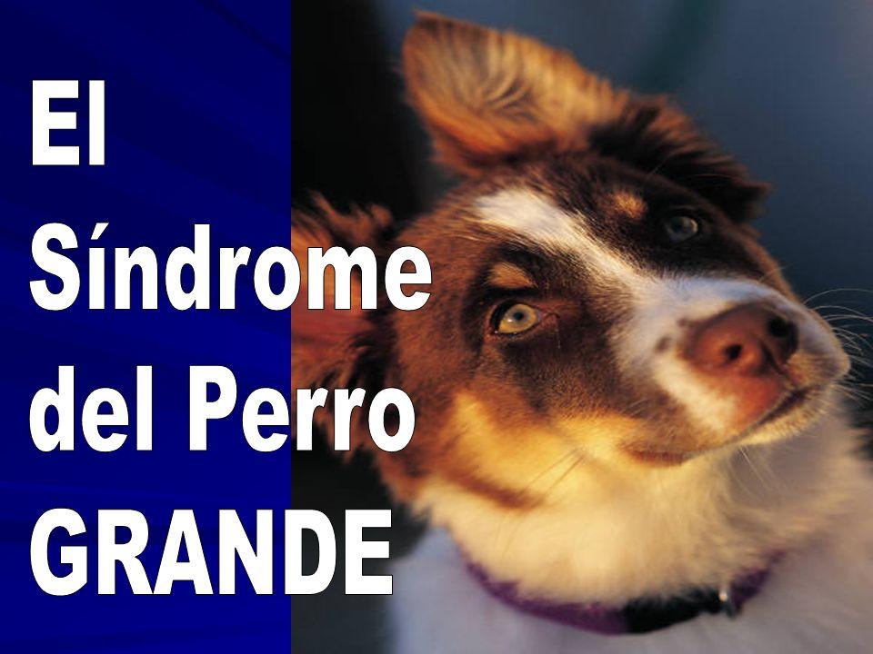 El Síndrome del Perro GRANDE