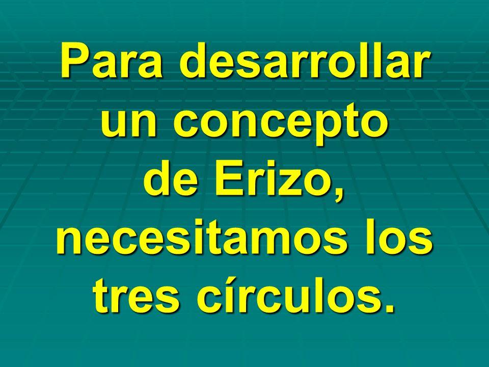 Para desarrollar un concepto de Erizo, necesitamos los tres círculos.