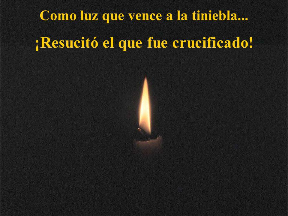 Como luz que vence a la tiniebla... ¡Resucitó el que fue crucificado!