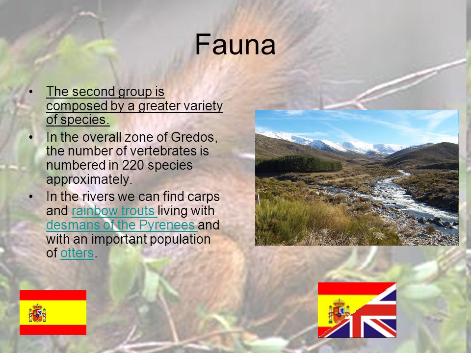 Fauna The second group is composed by a greater variety of species.