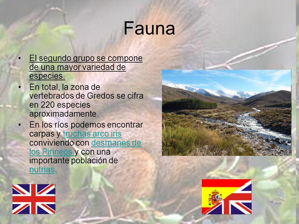 Fauna El segundo grupo se compone de una mayor variedad de especies.