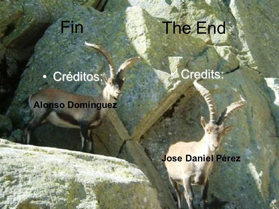 Fin The End Credits: Créditos: Alonso Domínguez Jose Daniel Pérez
