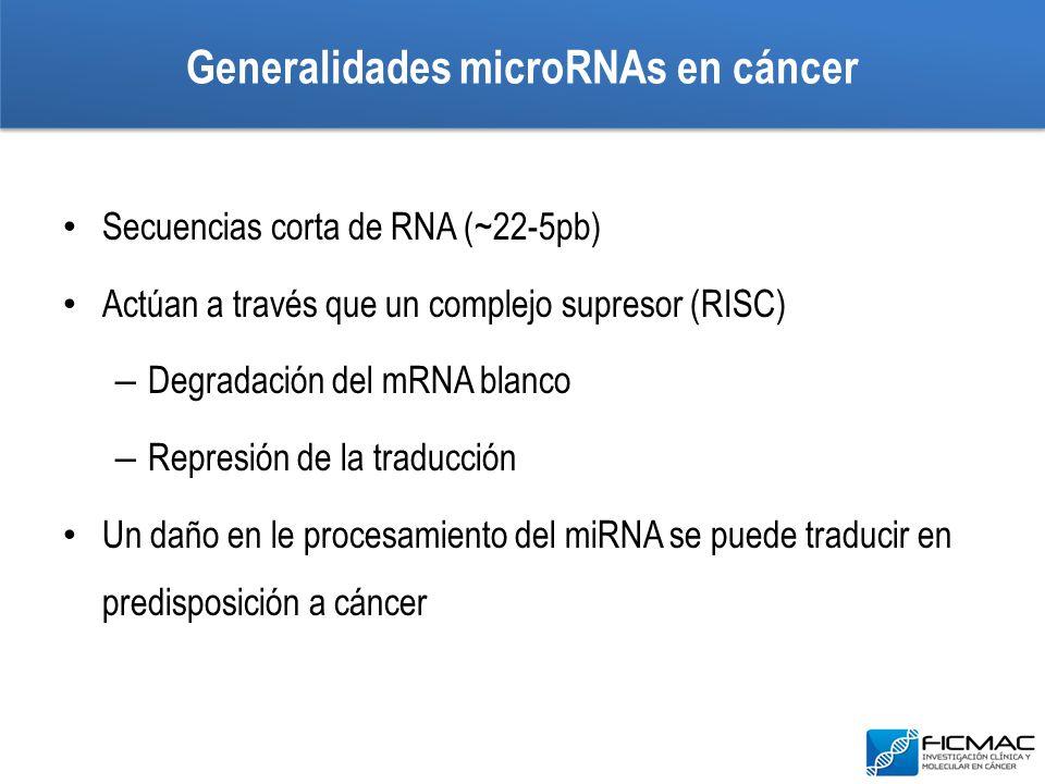 Generalidades microRNAs en cáncer