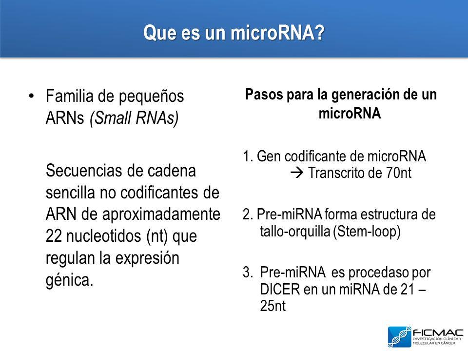 Que es un microRNA Familia de pequeños ARNs (Small RNAs)