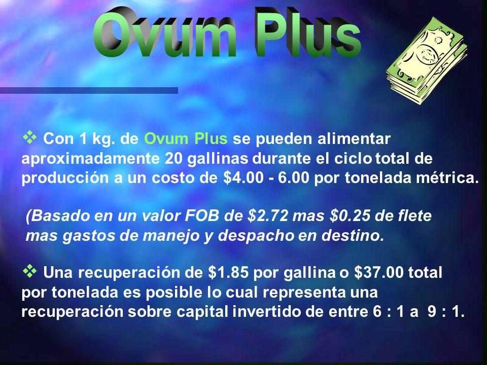 Ovum Plus