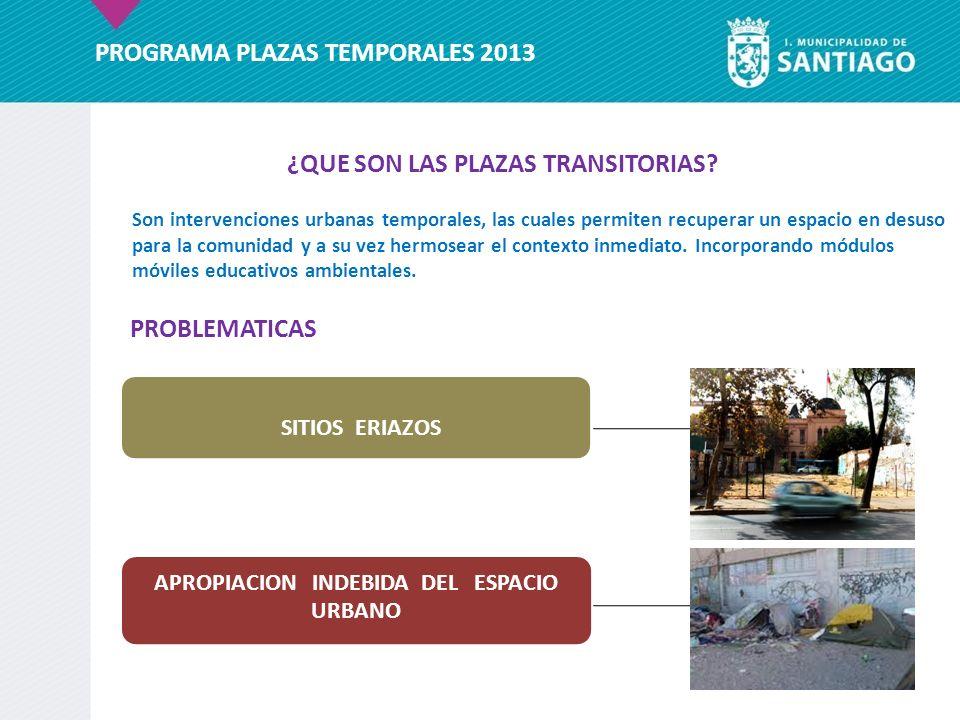 PROGRAMA PLAZAS TEMPORALES 2013