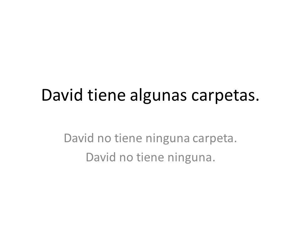 David tiene algunas carpetas.