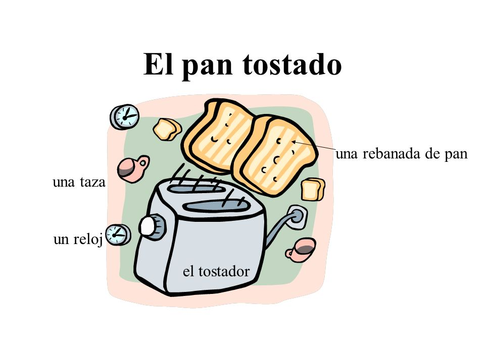 El pan tostado una rebanada de pan una taza un reloj el tostador