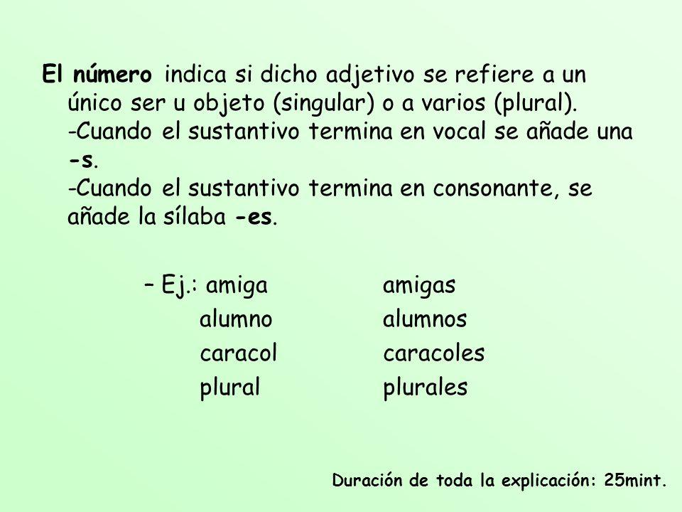 El número indica si dicho adjetivo se refiere a un único ser u objeto (singular) o a varios (plural). -Cuando el sustantivo termina en vocal se añade una -s. -Cuando el sustantivo termina en consonante, se añade la sílaba -es.