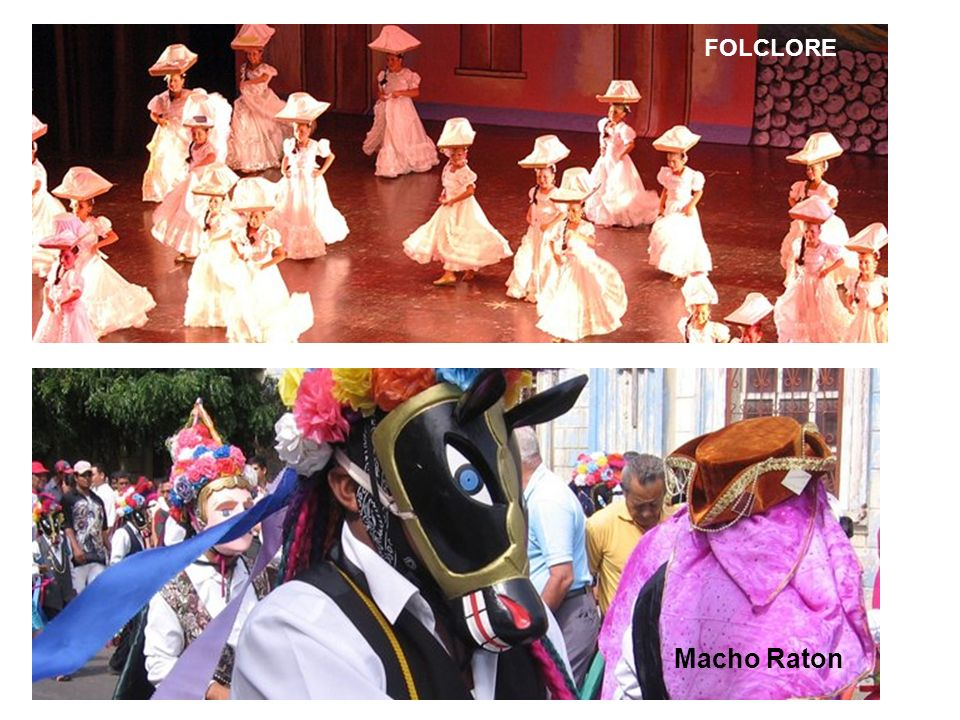 FOLCLORE Macho Raton