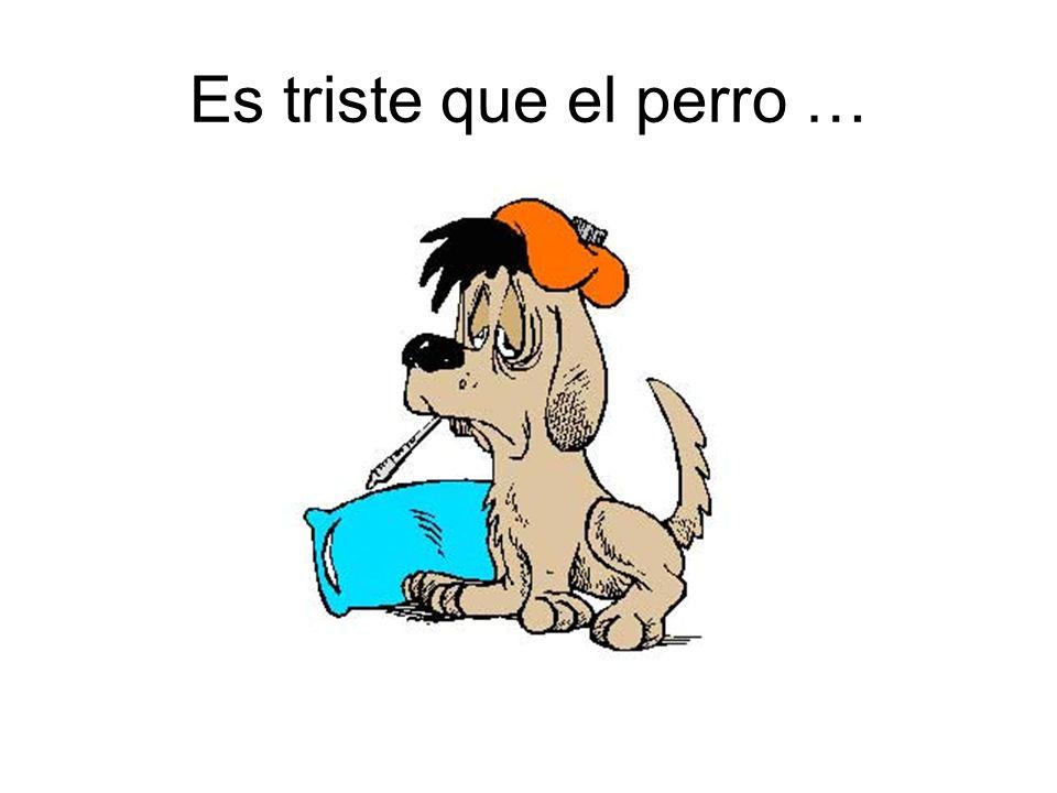 Es triste que el perro …