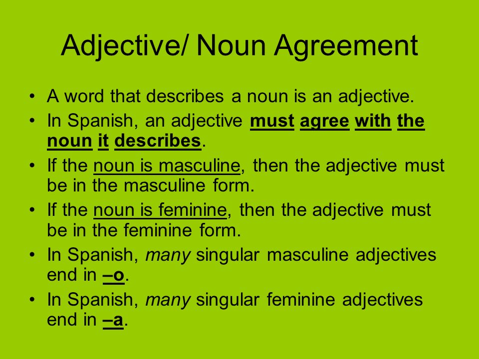 Adjective/ Noun Agreement