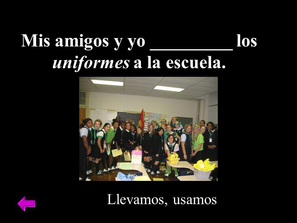 Mis amigos y yo _________ los uniformes a la escuela.