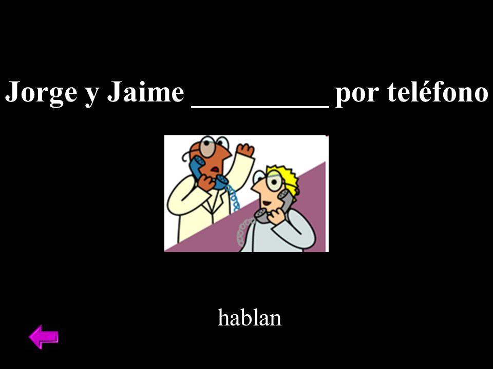 Jorge y Jaime _________ por teléfono