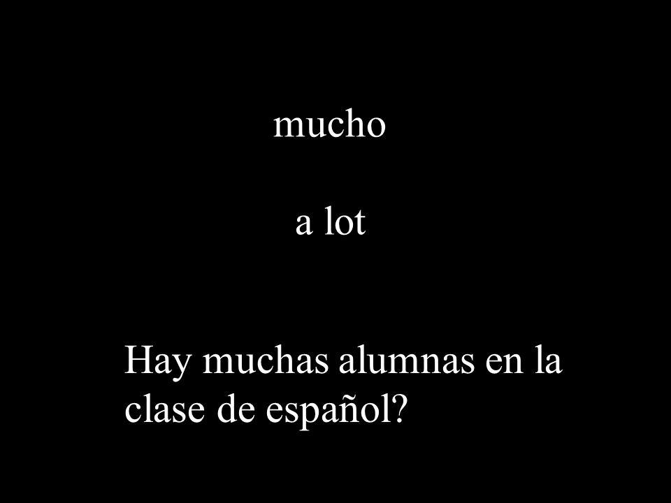 mucho a lot Hay muchas alumnas en la clase de español