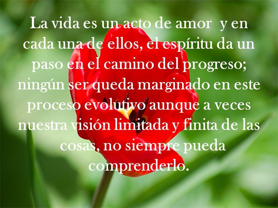 La vida es un acto de amor y en cada una de ellos, el espíritu da un paso en el camino del progreso; ningún ser queda marginado en este proceso evolutivo aunque a veces nuestra visión limitada y finita de las cosas, no siempre pueda comprenderlo.