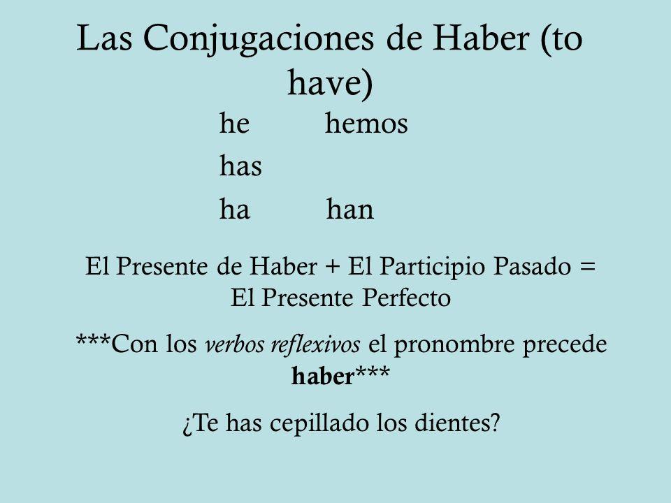 Las Conjugaciones de Haber (to have)