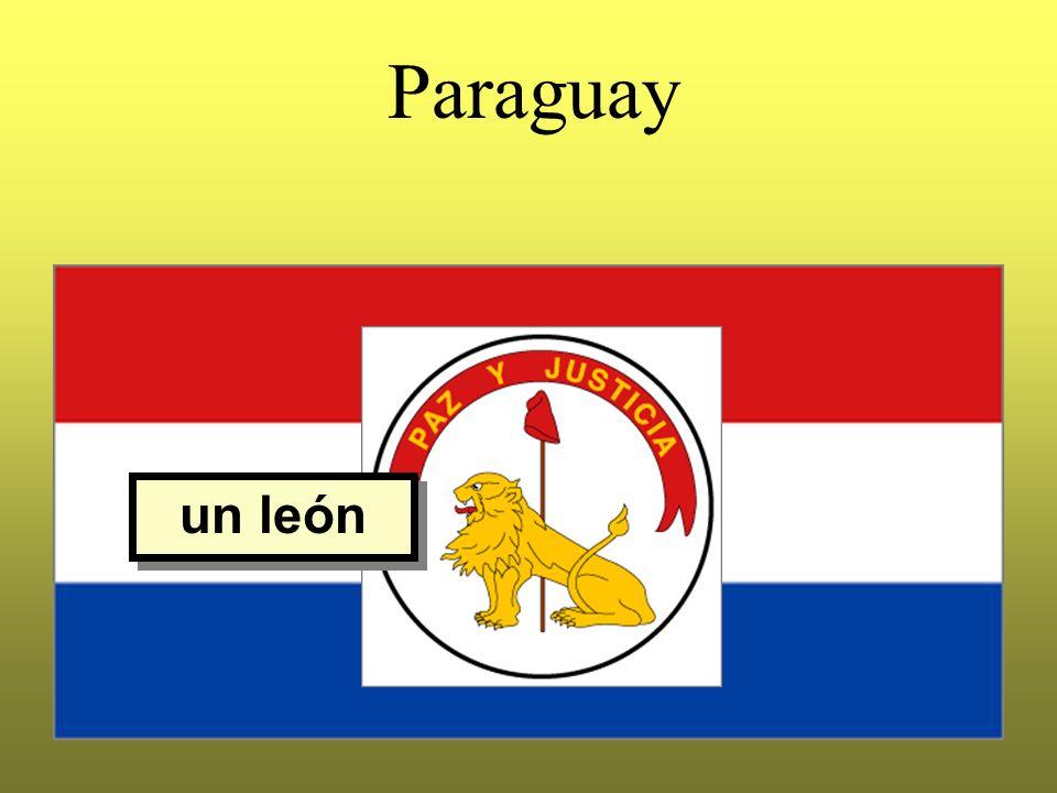 Paraguay un león