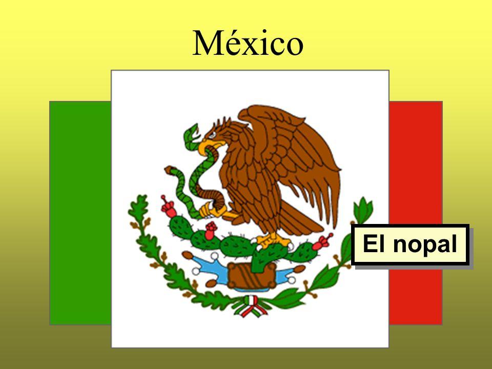 México El nopal