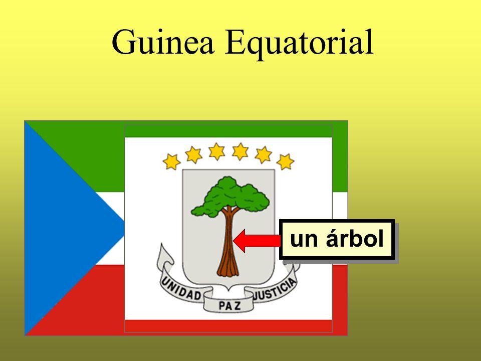 Guinea Equatorial un árbol
