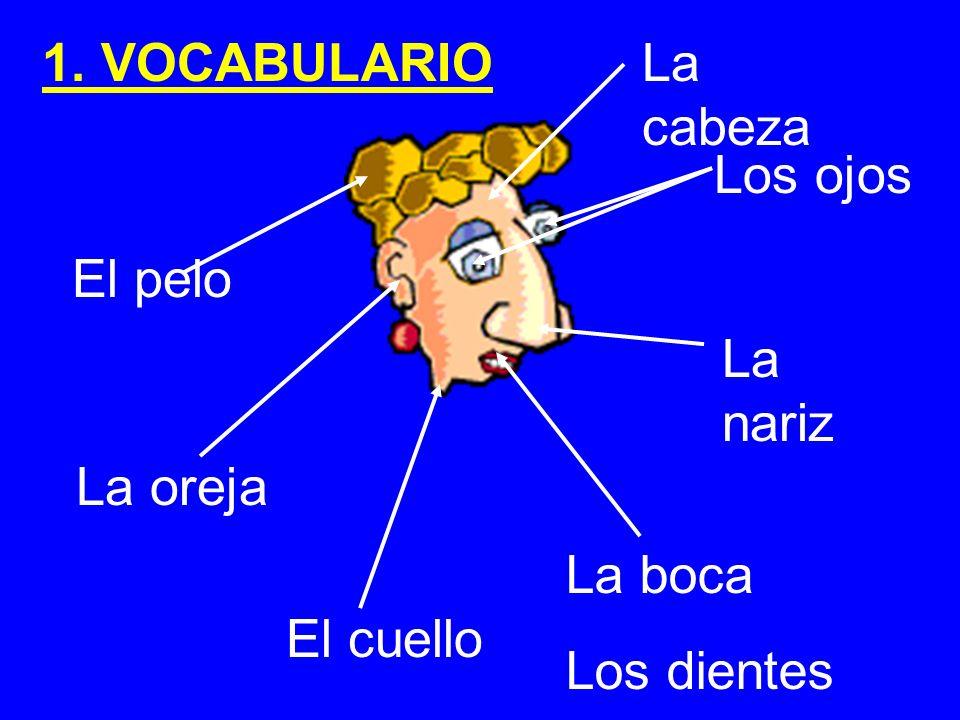 1. VOCABULARIO La cabeza Los ojos El pelo La nariz La oreja La boca Los dientes El cuello