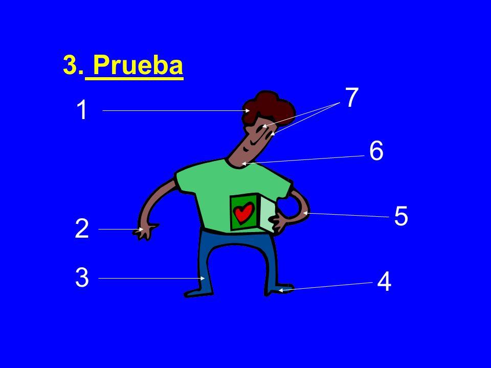 3. Prueba 7 1 6 5 2 3 4
