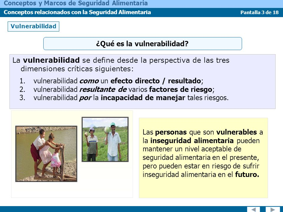 ¿Qué es la vulnerabilidad