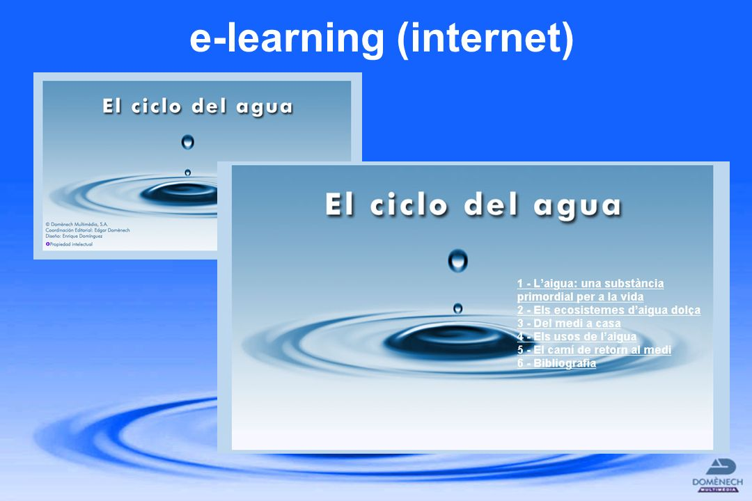 e-learning (internet)