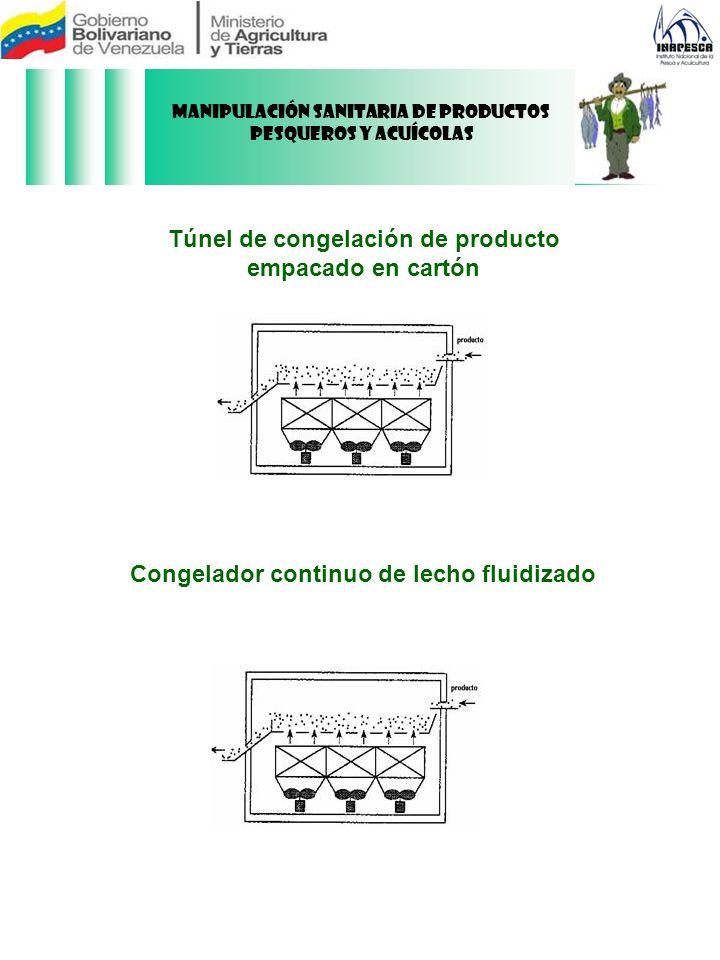 Túnel de congelación de producto