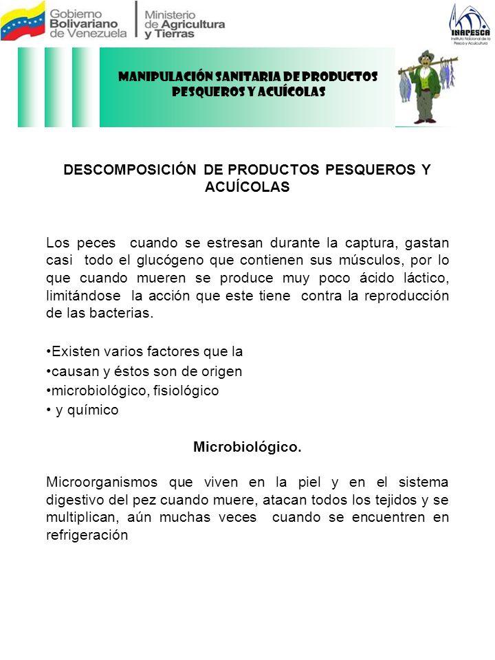DESCOMPOSICIÓN DE PRODUCTOS PESQUEROS Y ACUÍCOLAS