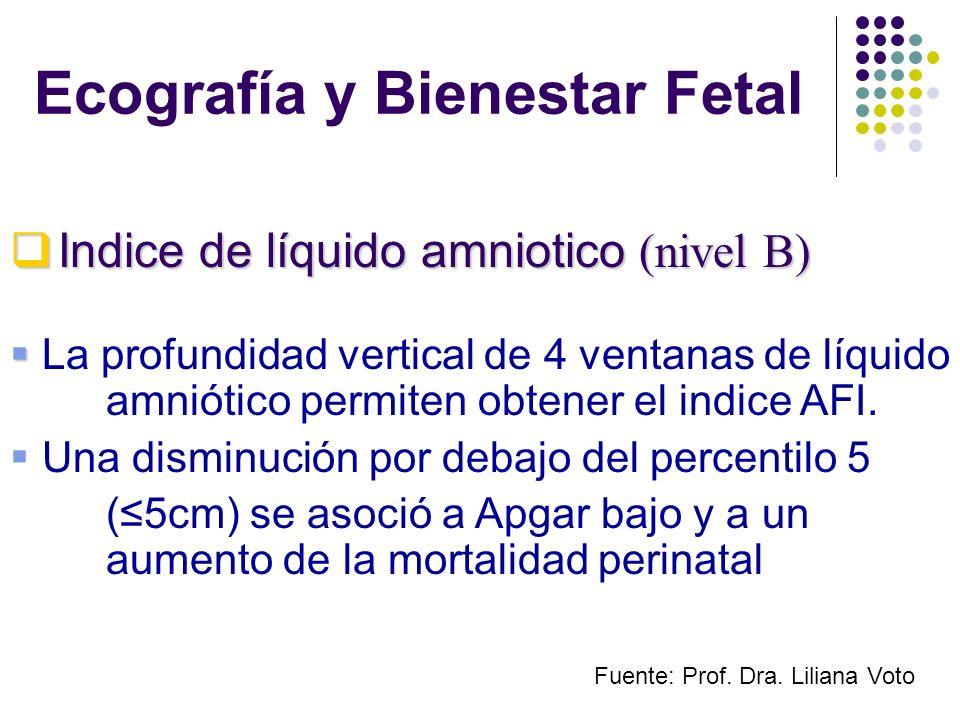 Ecografía y Bienestar Fetal