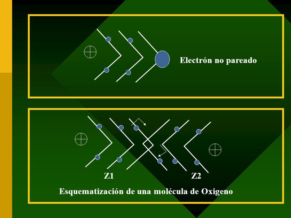 Electrón no pareado Esquematización de una molécula de Oxigeno Z1 Z2