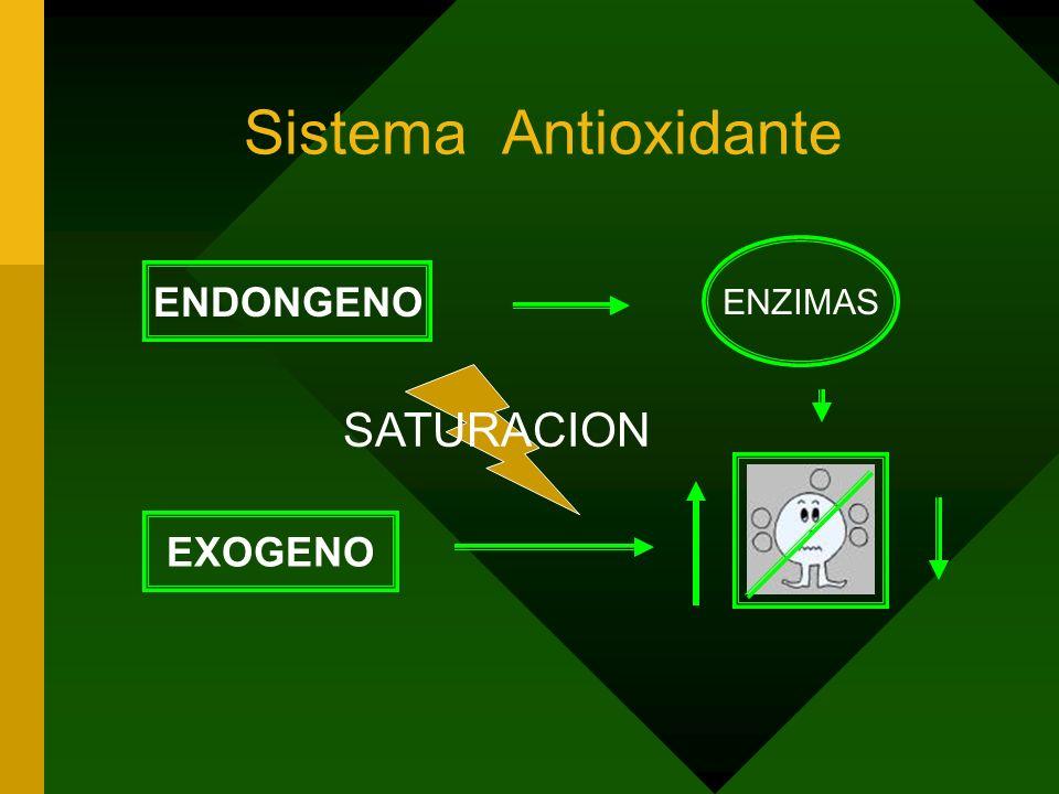Sistema Antioxidante ENZIMAS ENDONGENO SATURACION EXOGENO