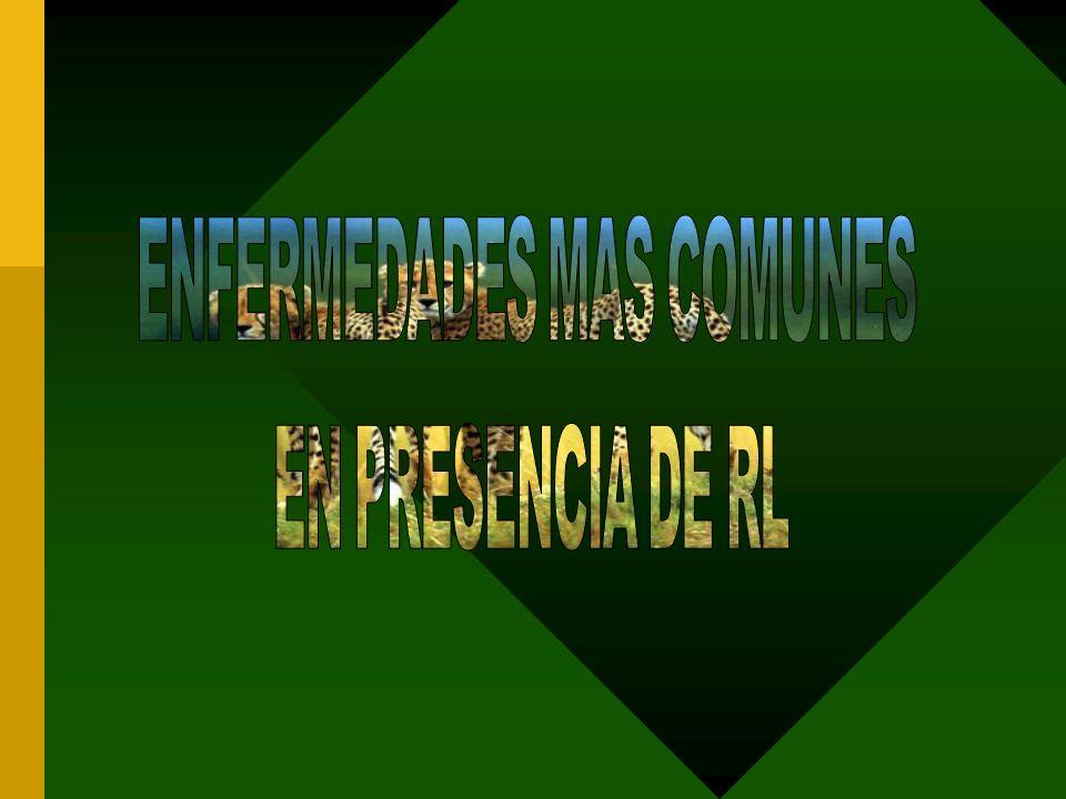 ENFERMEDADES MAS COMUNES
