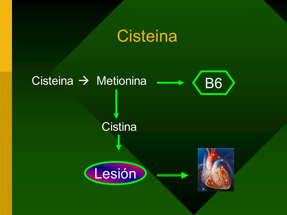 Cisteina Cisteina  Metionina Cistina B6 Lesión