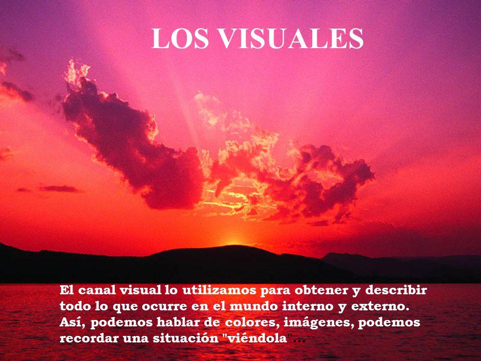 LOS VISUALESEl canal visual lo utilizamos para obtener y describir todo lo que ocurre en el mundo interno y externo.