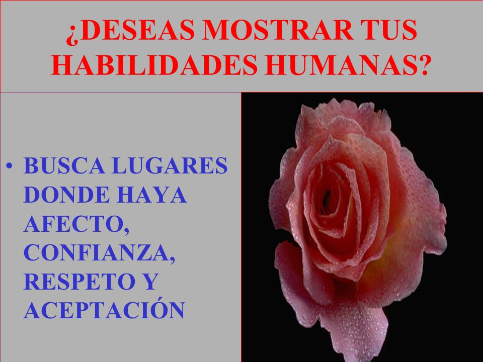 ¿DESEAS MOSTRAR TUS HABILIDADES HUMANAS