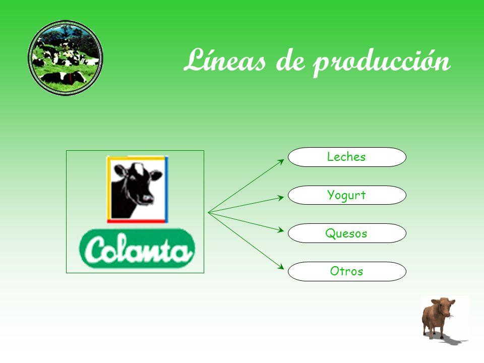 Líneas de producción Leches Yogurt Quesos Otros