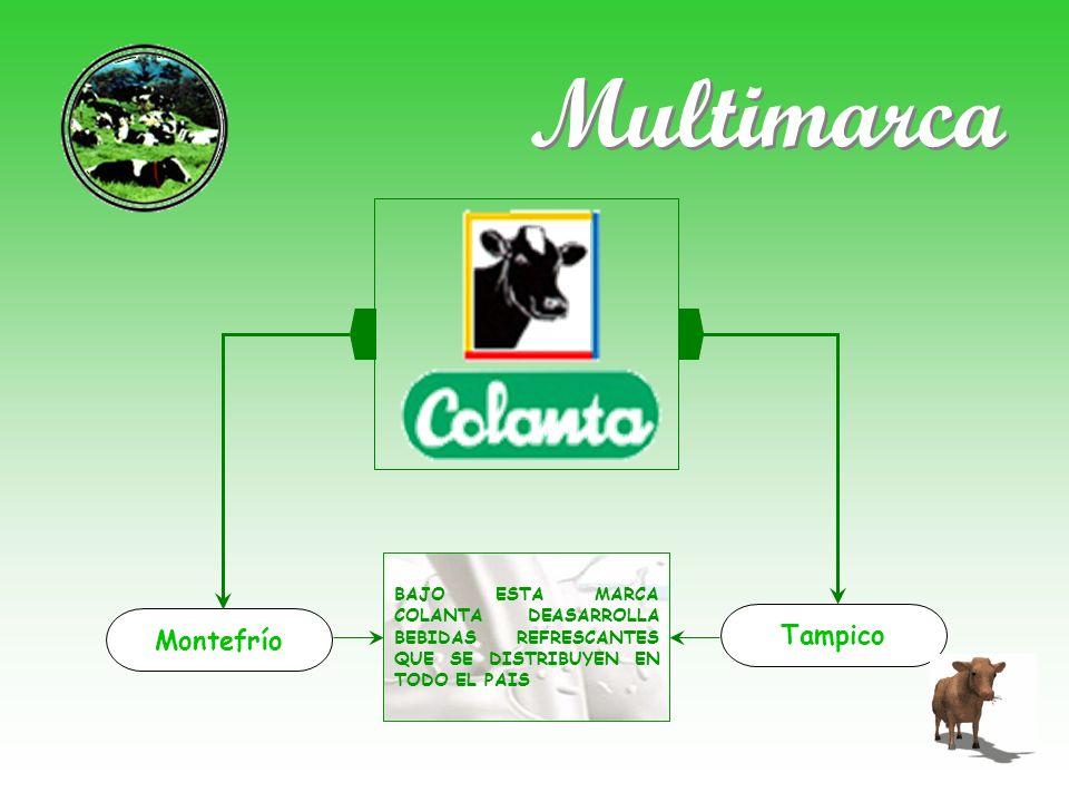 Multimarca Tampico Montefrío
