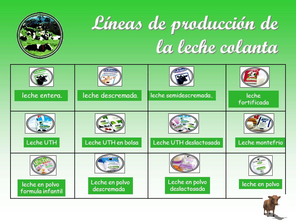 Líneas de producción de la leche colanta