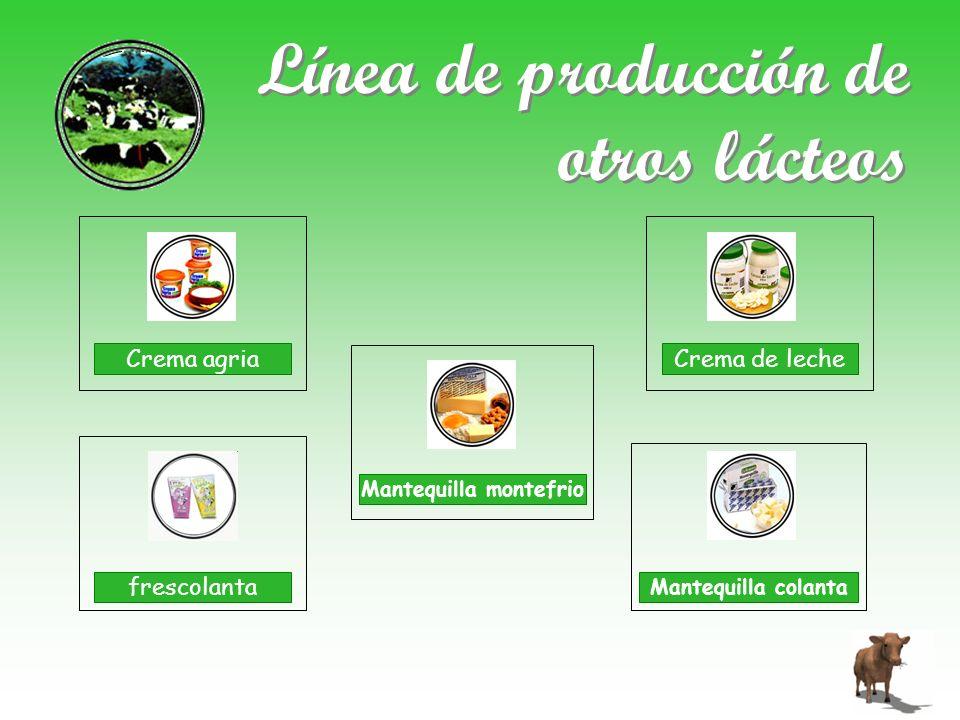Línea de producción de otros lácteos