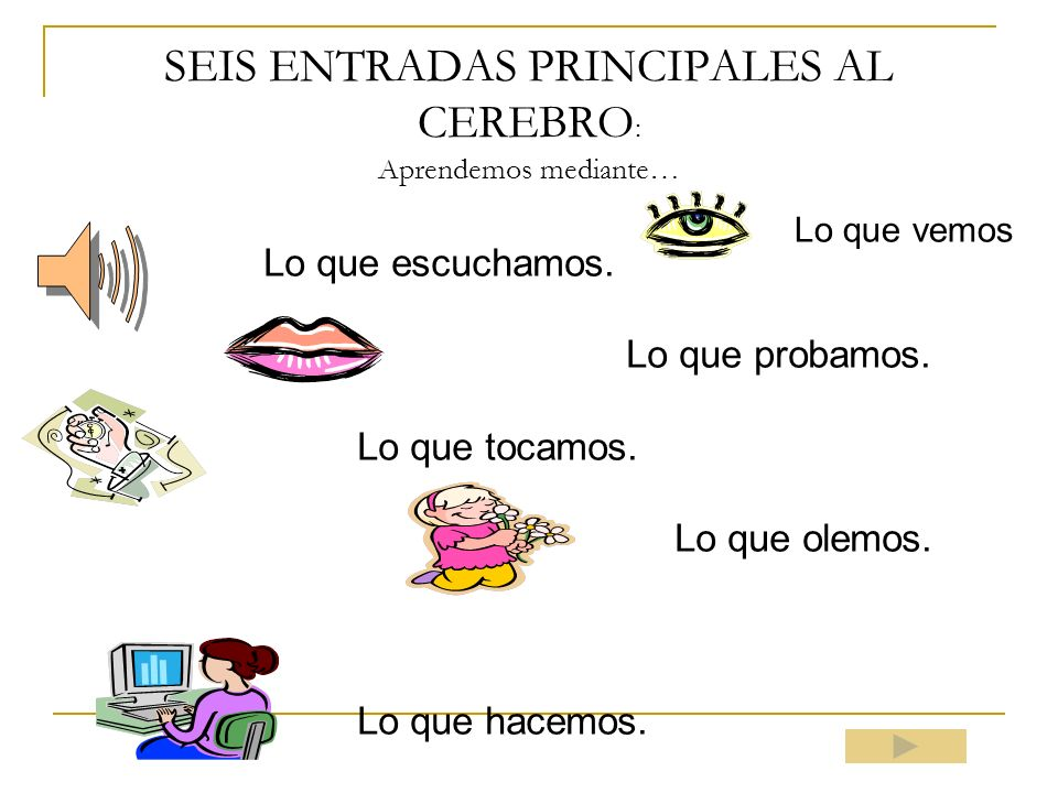 SEIS ENTRADAS PRINCIPALES AL CEREBRO: Aprendemos mediante…