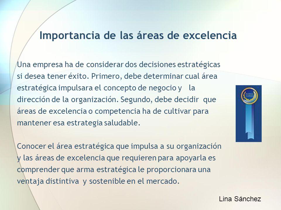 Importancia de las áreas de excelencia