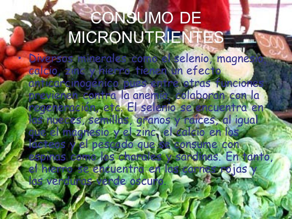 CONSUMO DE MICRONUTRIENTES