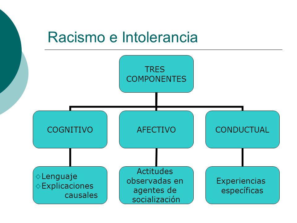 Racismo e Intolerancia