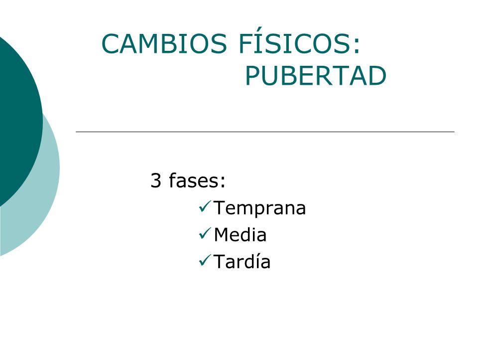 CAMBIOS FÍSICOS: PUBERTAD