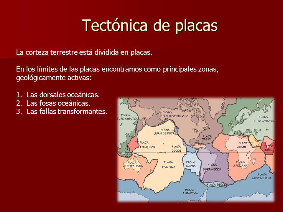 Tectónica de placas La corteza terrestre está dividida en placas.
