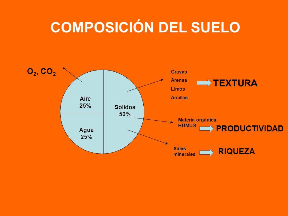 COMPOSICIÓN DEL SUELO TEXTURA O2, CO2 PRODUCTIVIDAD RIQUEZA Aire 25%