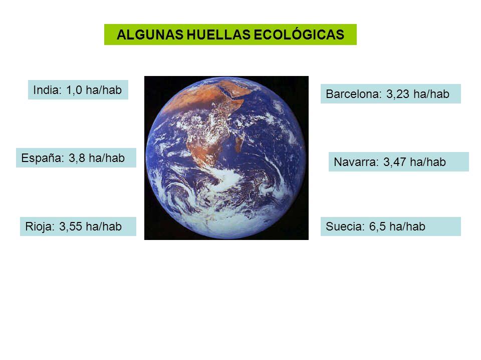 ALGUNAS HUELLAS ECOLÓGICAS
